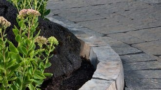 Anglia Edger Beauty 2