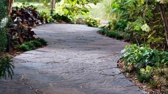 Mega Arbel Beauty 1