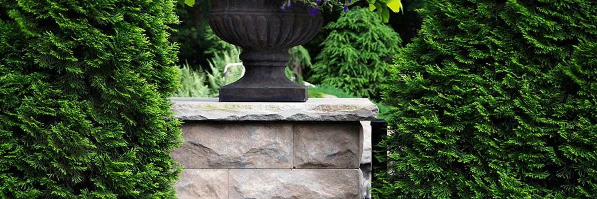 Benefits - Planter Sitting on a Square Shaped Retaining Wall